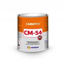 Adeziv termorezistent CARMYFIX CM-54  5 Lt